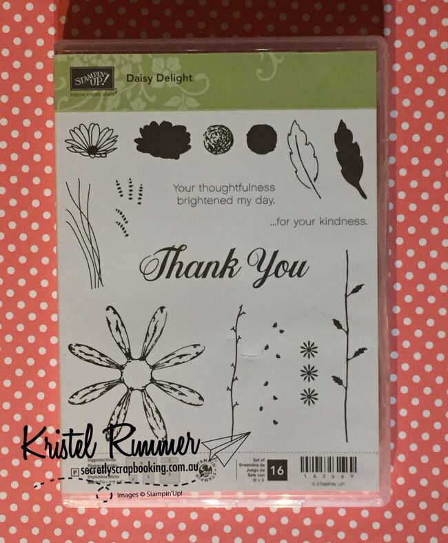 Daisy Delight Stampset