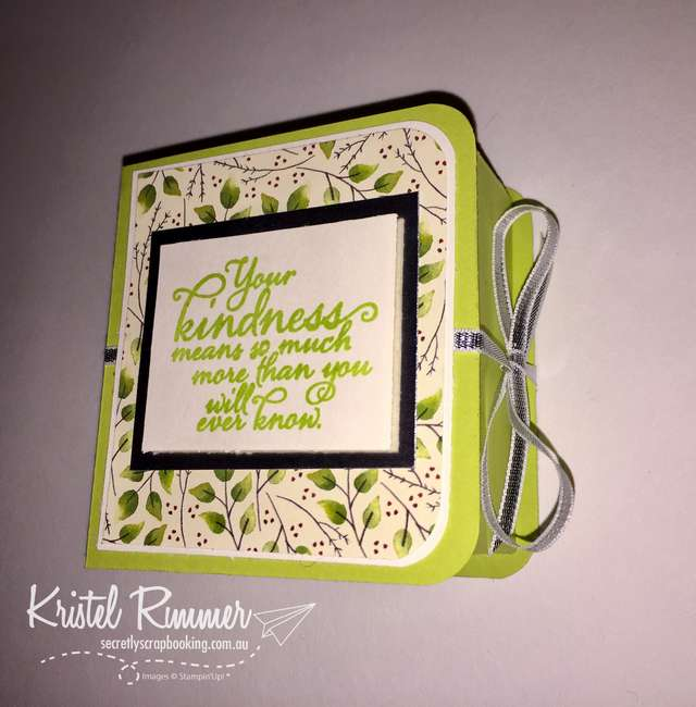 "Book Box with Painted Harvest Stamp Set, Lemon Lime Twist, Very Vanilla, Silver Foil Sheets, Painted Autumn DSP and 1/8"" (3.2mm) Silver Ribbon (Stampin' Up!) - Secretly Scrapbooking (Bunbury, WA)"