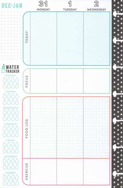 Mini Deluxe Happy Planner® - Healthy Hero (2019) SKU: PLNM-98 - January Weekly View Page (Half) - Secretly Scrapbooking (Bunbury, WA)